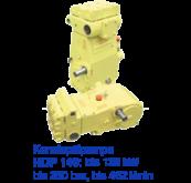HDP146